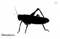 Small Ants Silhouette Free Vector Art