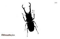Insect Silhouette Vector And Graphics