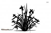 Iris Plant Silhouette Icon