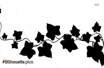 Ivy Vine Silhouette