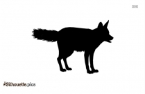 Wolf Standing Silhouette Vector
