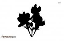 Rosebud Silhouette