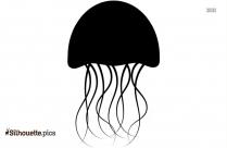 Jellyfish Drawing Silhouette Art