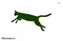 Jumping Leaping Cat At Silhouette