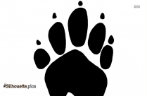 Raccoon Tracks Silhouette Vector Image