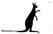 Kangaroo Silhouette Images