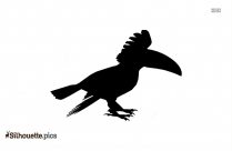 Keel Billed Toucan Silhouette Clipart Vector