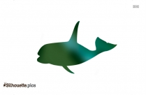 Whale Sea Animal Species Clipart