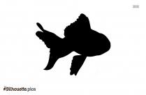 Koi Fish Silhouette Image