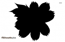 Black And White Hibiscus Silhouette