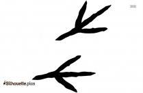 Black Parrot Footprint Silhouette Image