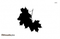Snakeroot Leaf Silhouette Picture