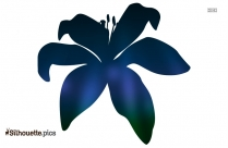 Lily Flower Silhouette Image And Vector