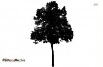 Apple Tree Drawing Silhouette, Clip Art