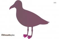 Peafowl Silhouette