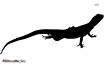 Lizard Silhouette Icon Vector