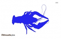 Dissecting Lobster Silhouette