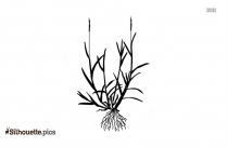 Long Grass With Roots Silhouette Free Vector Art