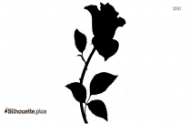 Rose Flower Silhouette Image