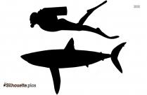 Shark Drawing Silhouette Illustration
