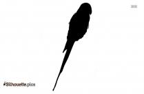 Bird Sarus Crane Silhouette