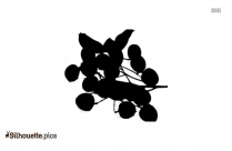 Wine Grapes Fruit Silhouette Picture