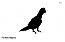 Bird Sitting Silhouette Vector