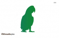 Peacock PNG Silhouette