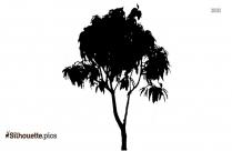 Vanilla Tree Silhouette Vector