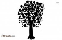 Black And White Lime Tree Silhouette