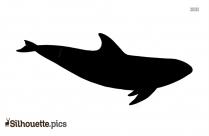 Melon Headed Whale Silhouette