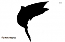 Cardinal Bird Silhouette Illustration