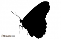 Monarch Butterfly Silhouette Clipart