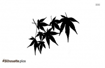Plant With Roots Silhouette