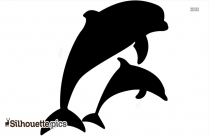 Mother And Baby Dolphin Silhouette