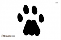 Racoon Clipart Paw