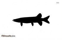 Panga Fish Silhouette Illustration