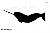 Fur Seal Clipart Silhouette