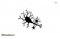 Neuron Clip Art Silhouette