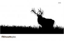 Elk Black And White Silhouette