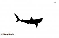 Nurse Shark Silhouette Picture