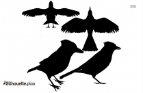Blue Ray Bird Vector Silhouette