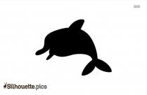 Ocean Dolphin Silhouette