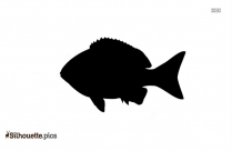Swordfish Silhouette Clipart