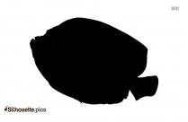 Ocean Fish Silhouette Illustration