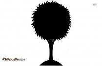 Black Simple Tree Drawing Silhouette Image