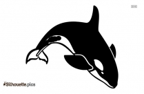 Orca Silhouette Image Free Download