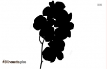 Orchid Flowers Silhouette