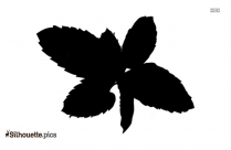 Black Mint Leaves Silhouette Image