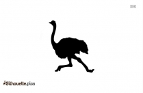 Real Bird Silhouette Free Vector Art